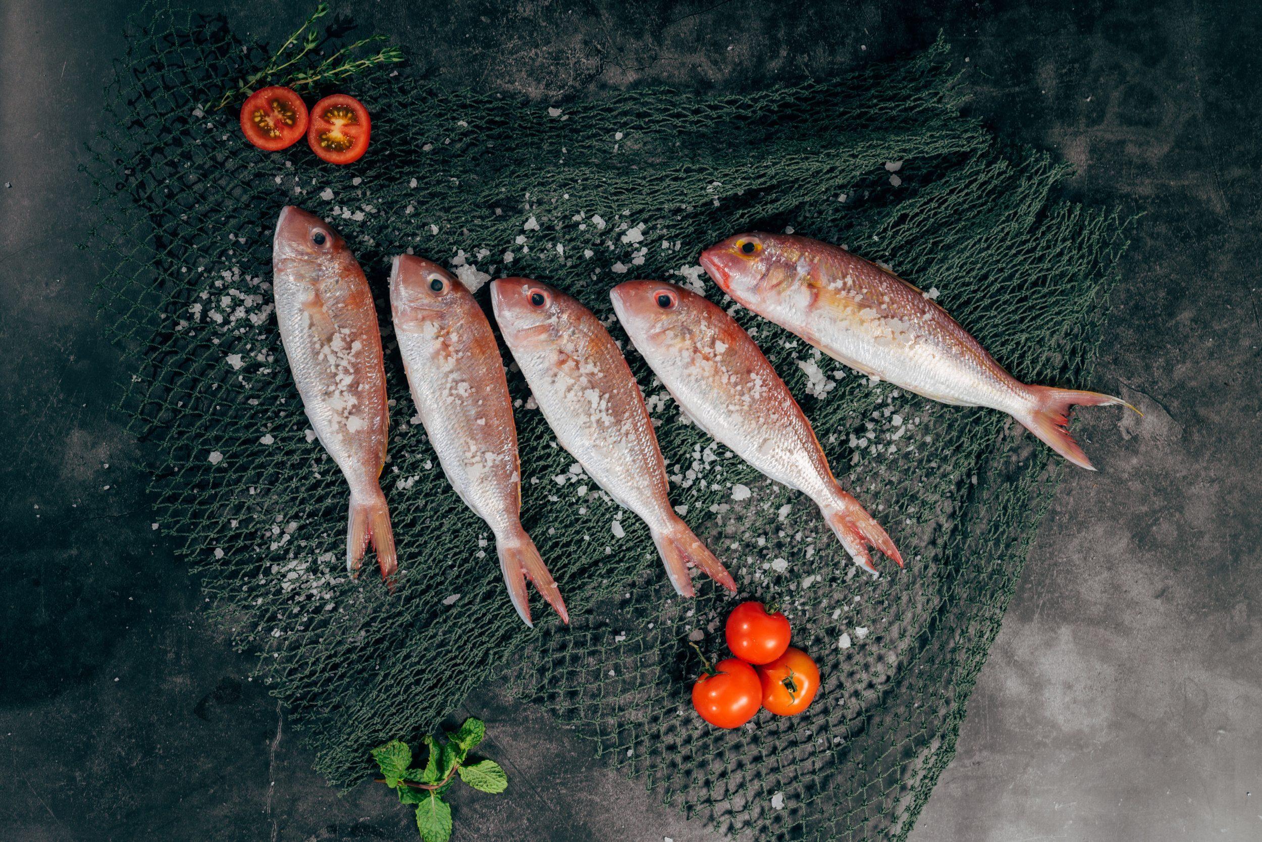 Nefis Balık Tarifleri
